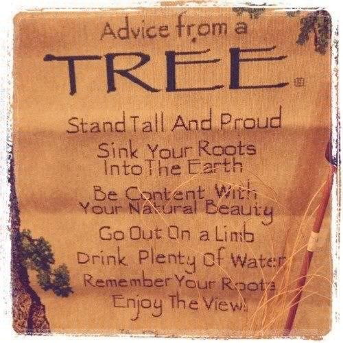 Image result for be like a tree poem