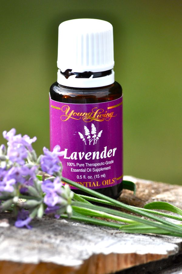 Young Living Lavender Essential Oil High Vibe