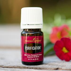 PurificationYL