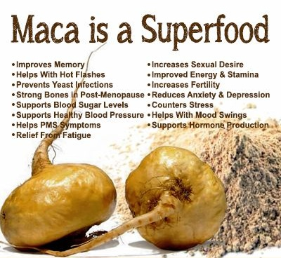 what is maca root extract used for